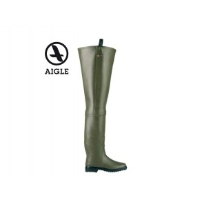Aigle Truite